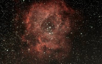 NGC 2238 (Nébuleuse de la Rosette)